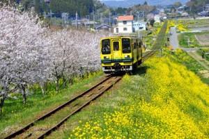 180623_rail