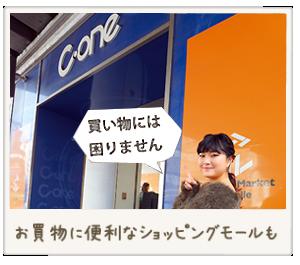 買い物に便利なショッピングモールもある