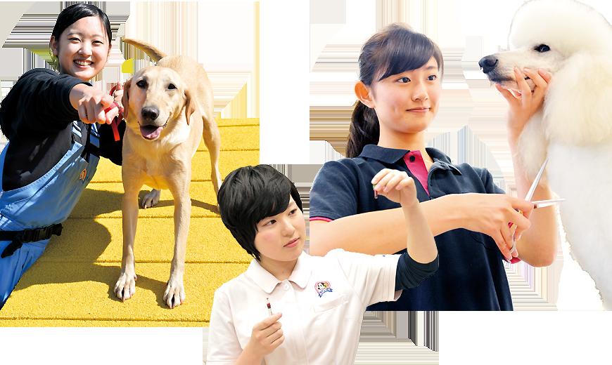 ちば愛犬動物フラワー学園 キャンパスライフ